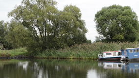 Havel river. boat is driving, passing by typical landscape with meadows and willow tries. Havelland region. Germany. Boats at havel river. boat is driving stock footage