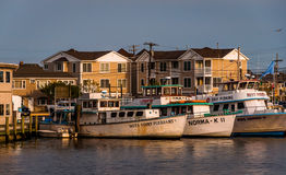 Boats and houses along the Manasquan Inlet in Point Pleasant Bea Stock Photo