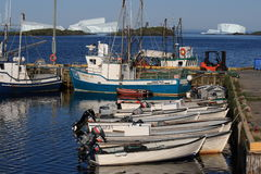 Boats and Icebergs at Goose Cove Stock Photography