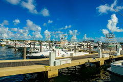 Free Boats In Marina Stock Images - 83162224