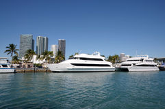 Boats In Miami, Florida Royalty Free Stock Photography