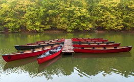 Boats on a lake. Boats on a green water in autumn Stock Photography