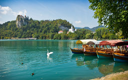 Boats on Lake Bled horizontal with swan Stock Photo