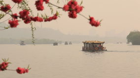 Boats Lake Blossoming Cherry Spring Season. Boats float on the lake. In the foreground blossoming cherry. Hangzhou, China stock footage