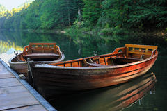Boats lake forest Royalty Free Stock Image