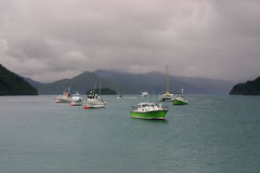 Boats in a little harbor under cloudy sky. Marlborough Sounds, New Zealand Stock Photos