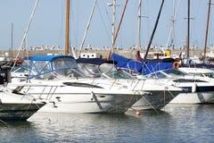 Boats in marina. Anchored boats in Constanta marina port Royalty Free Stock Images