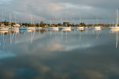 Boats on a marina in the morning stock image