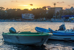 Boats in the marina Royalty Free Stock Images