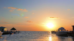 Boats in the Marina During Sunrise. Boats slowly swinging on the caribbean sea during sun rising over the seascape horizon stock footage