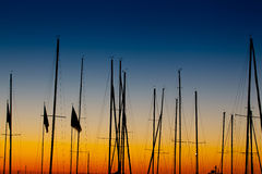 Boats Mast sillhoutte sunrise. A group of boats mast at sunrise Royalty Free Stock Photo