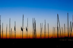 Boats Mast sillhoutte sunrise. A group of boats mast at sunrise Royalty Free Stock Image