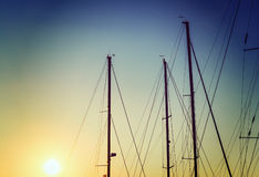 Boats masts under a clear sky Royalty Free Stock Image