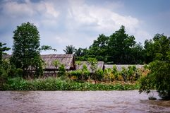 Boats on the mekong delta vietnam stock photo