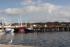 Boats moored in the calm waters of Killybegs Stock Photos