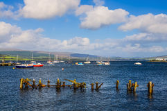Boats moored in Gourock Bay Royalty Free Stock Photography
