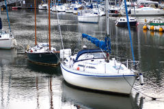 Boats moored. In the harbour Royalty Free Stock Image
