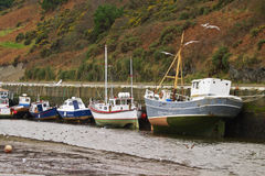 Boats moored at low tide. Below a gorse covered hillside resting on the exposed mud flats, Isle of Man Stock Photos
