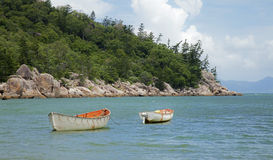 Magnetic Island Boats Moored. White and orange boats moored just off shore on Magnetic Island Royalty Free Stock Images