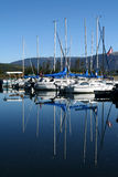 Boats moored in marina. Scenic view of masted boats moored in marina, reflecting on blue sea Stock Photography