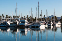 Boats Moored in Marina at Chula Vista Bayfront Park. Boats moored in bay at the Chula Vista Bayfront park with mountain peak in the background Royalty Free Stock Photography