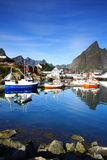 Boats moored in a port. Bay in the lofoten islands with boats moored in the port Stock Image