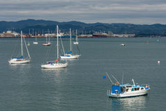 Boats moored at Tauranga harbor Royalty Free Stock Photography