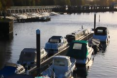 Boats moored at Teddington, sunrise royalty free stock image