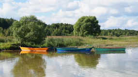 Boats moored to the shore Stock Image