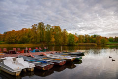 Boats on the park pond. Royalty Free Stock Photo