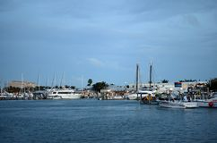 Boats parked in harbor. Florida USA Royalty Free Stock Images
