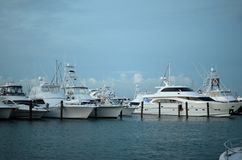 Boats parked in harbor. Florida USA Stock Images