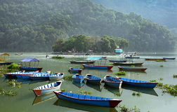 Boats parked in the Phewa lake of Pokhara Royalty Free Stock Images