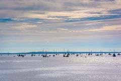 Boats in the Passagassawakeag River in Belfast, Maine. Royalty Free Stock Photo