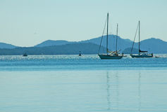 Boats. Picture of sail boats around Vancouver Island,BC,Canada Royalty Free Stock Photo