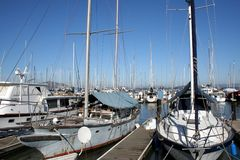 Boats in a pier. Several boats at Pier 39 in San Francisco, CA Royalty Free Stock Photo