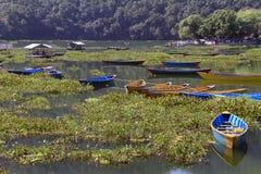 Boats in Pokhara Royalty Free Stock Photos