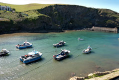 Boats in Port Isaac Royalty Free Stock Photography