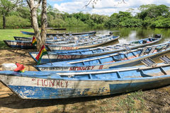 Boats in the port on Madidi River Stock Photography