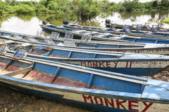 Boats in the port on Madidi River Royalty Free Stock Images