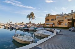 Boats in Port of Marbella. With beautiful palmtrees Royalty Free Stock Photography