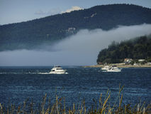 Boats on Puget Sound. Two luxury boats glide on Puget Sound. Mountains, fog and trees fill the background Royalty Free Stock Image