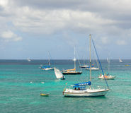 Boats racing in an annual competition in the caribbean Stock Images