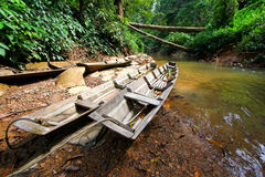 Boats in rainforest  Stock Images