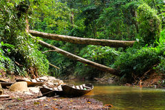 Boats in rainforest interior Royalty Free Stock Photography