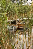 Boats in the reeds Royalty Free Stock Photo
