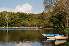Boats reflecting on lake. Rowing boats reflecting on lake with trees in background royalty free stock photo