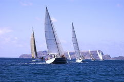 boats in regatta Royalty Free Stock Photos