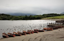 Boats at rest. End of day is heralded by coralling the boats on lake shore. Undisturbed birds search for the elusive fish, and the threatening clouds on the stock photo