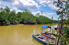 Boats resting along river in asian rural area Stock Images